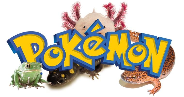 pokémones anfibios