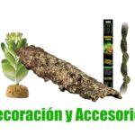 comprar accesorios y decoración para terrarios de anfibios