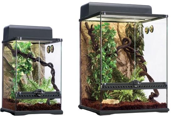 Kit de terrario habitat tropical exoterra
