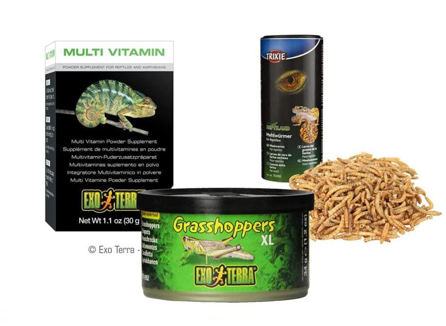 Alimento seco, criaderos, vitaminas y suplementos para anfibios